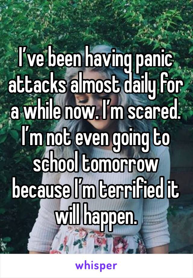 I've been having panic attacks almost daily for a while now. I'm scared. I'm not even going to school tomorrow because I'm terrified it will happen.