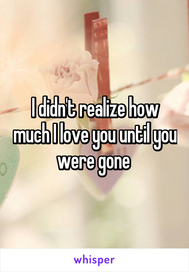 I didn't realize how much I love you until you were gone
