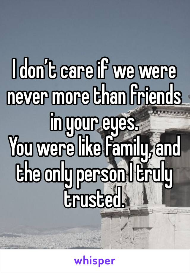 I don't care if we were never more than friends in your eyes. You were like family, and the only person I truly trusted.