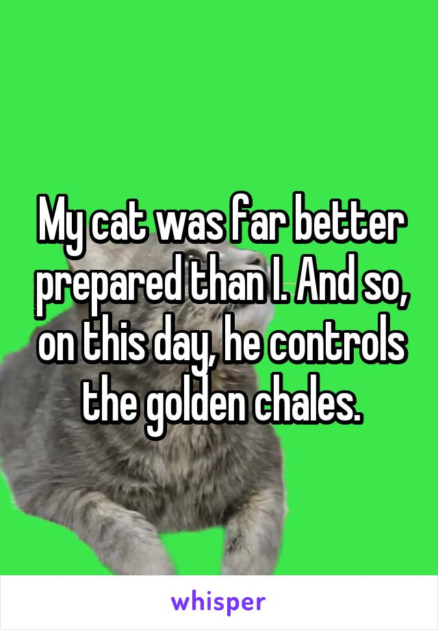 My cat was far better prepared than I. And so, on this day, he controls the golden chales.