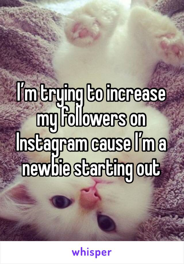 I'm trying to increase my followers on Instagram cause I'm a newbie starting out