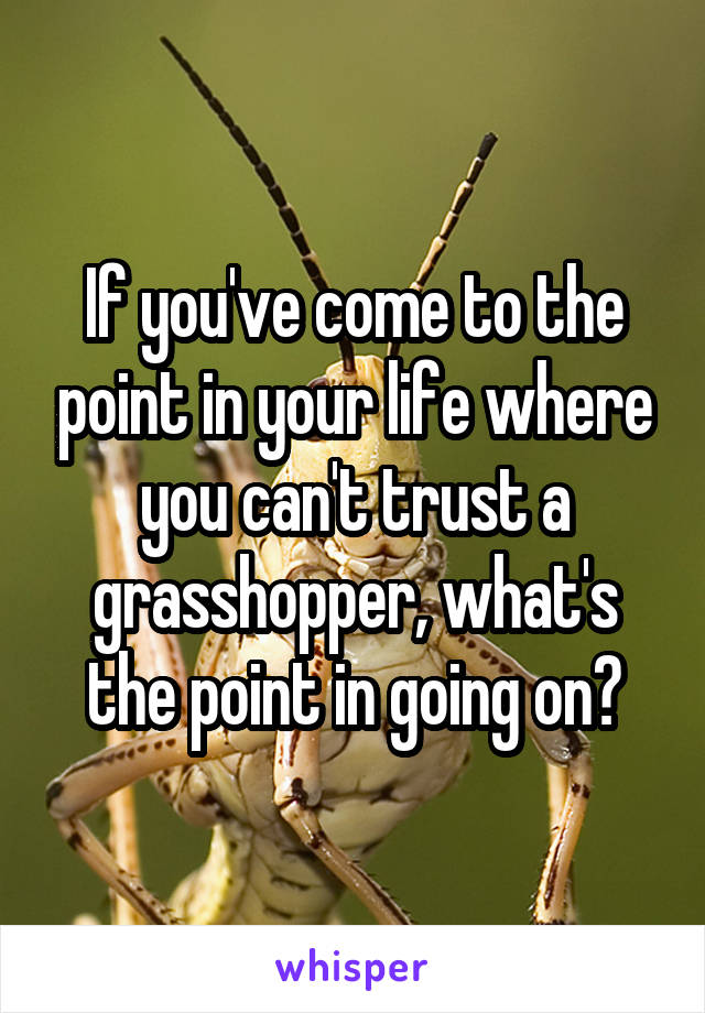 If you've come to the point in your life where you can't trust a grasshopper, what's the point in going on?