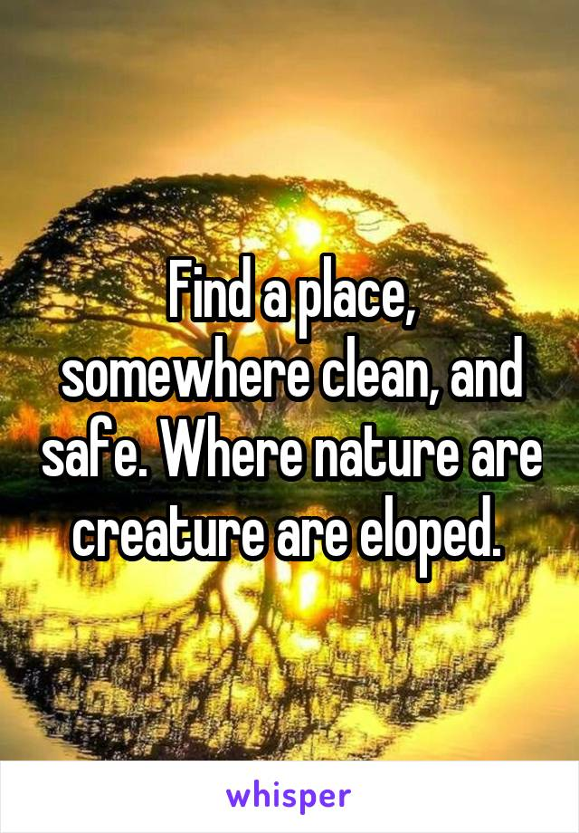 Find a place, somewhere clean, and safe. Where nature are creature are eloped.