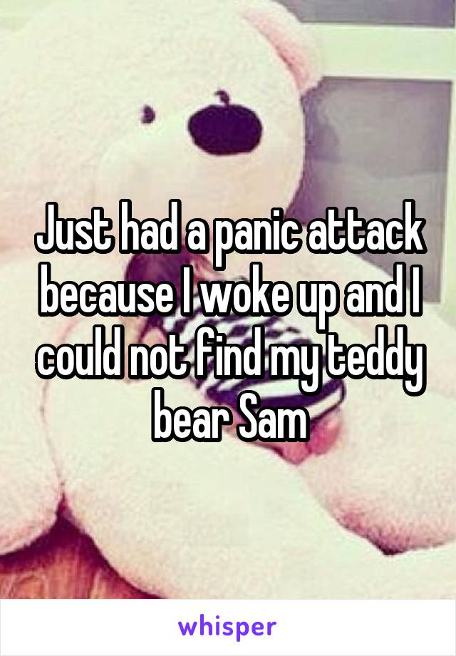 Just had a panic attack because I woke up and I could not find my teddy bear Sam