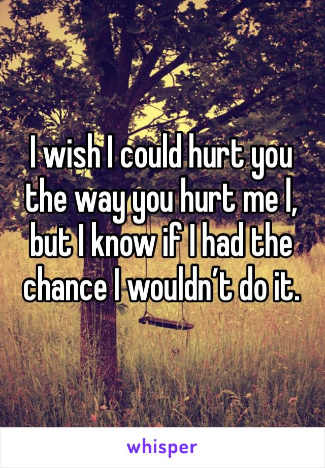 I wish I could hurt you the way you hurt me l, but I know if I had the chance I wouldn't do it.