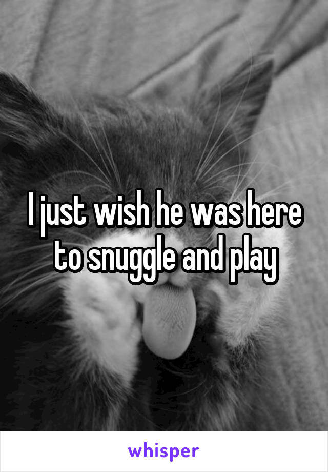 I just wish he was here to snuggle and play