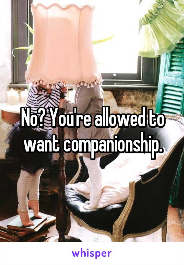 No? You're allowed to want companionship.