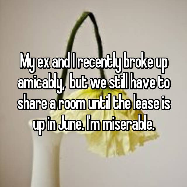 My ex and I recently broke up amicably,  but we still have to share a room until the lease is up in June. I'm miserable.