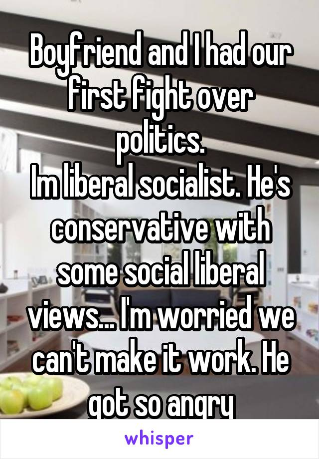 Boyfriend and I had our first fight over politics. Im liberal socialist. He's conservative with some social liberal views... I'm worried we can't make it work. He got so angry