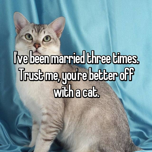 I've been married three times. Trust me, you're better off with a cat.