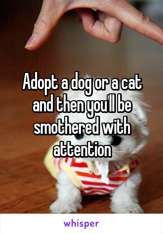Adopt a dog or a cat and then you'll be smothered with attention