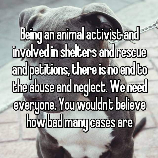 Being an animal activist and involved in shelters and rescue and petitions, there is no end to the abuse and neglect. We need everyone. You wouldn't believe how bad many cases are