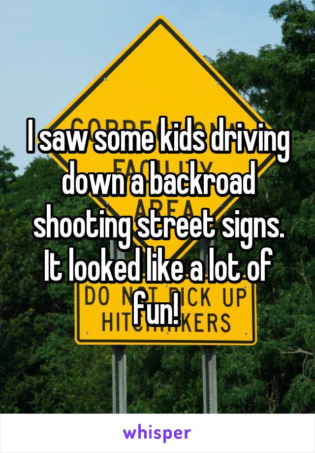 I saw some kids driving down a backroad shooting street signs. It looked like a lot of fun!