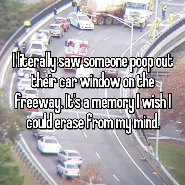 I literally saw someone poop out their car window on the freeway. It's a memory I wish I could erase from my mind.