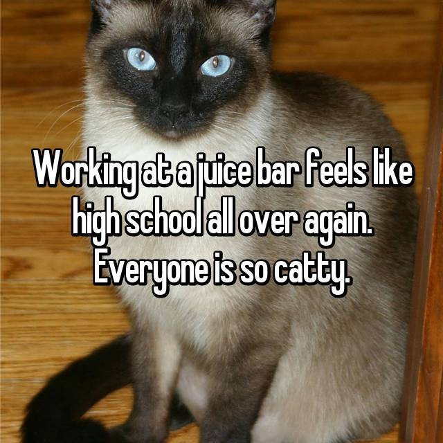 Working at a juice bar feels like high school all over again. Everyone is so catty.