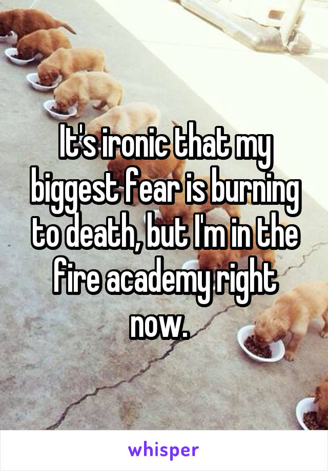It's ironic that my biggest fear is burning to death, but I'm in the fire academy right now.