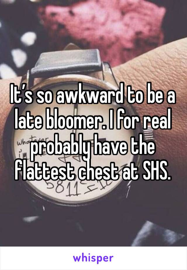 It's so awkward to be a late bloomer. I for real probably have the flattest chest at SHS.