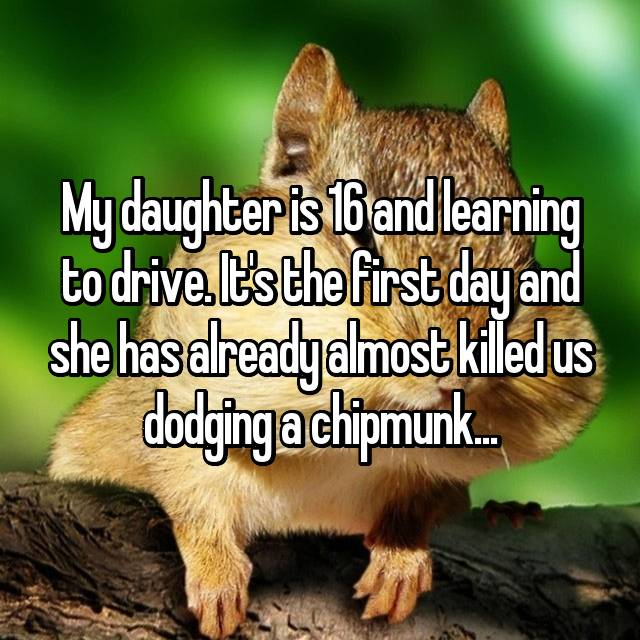 My daughter is 16 and learning to drive. It's the first day and she has already almost killed us dodging a chipmunk...