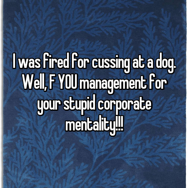 I was fired for cussing at a dog. Well, F YOU management for your stupid corporate mentality!!!