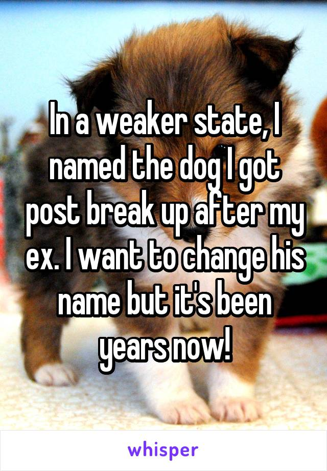 In a weaker state, I named the dog I got post break up after my ex. I want to change his name but it's been years now!