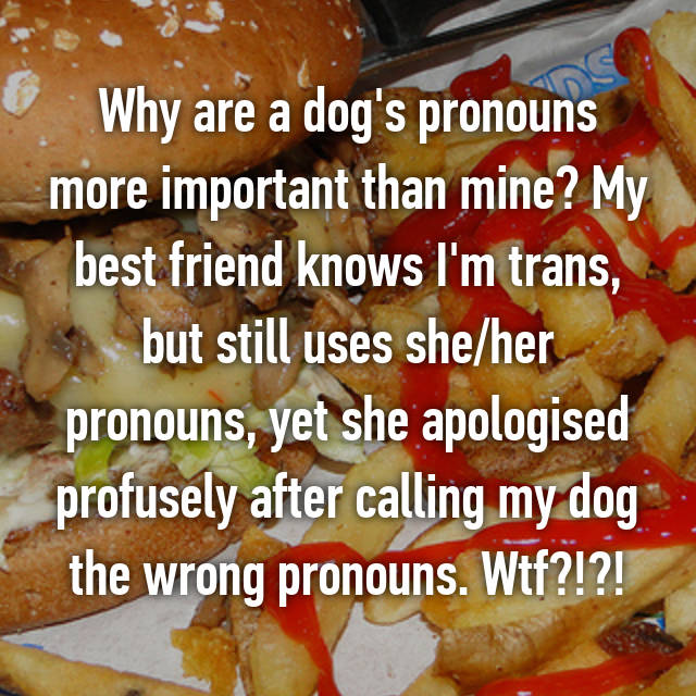 Why are a dog's pronouns more important than mine? My best friend knows I'm trans, but still uses she/her pronouns, yet she apologised profusely after calling my dog the wrong pronouns. Wtf?!?!