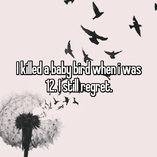 I killed a baby bird when i was 12. I still regret.