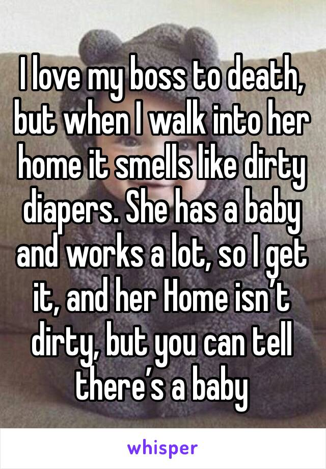 I love my boss to death, but when I walk into her home it smells like dirty diapers. She has a baby and works a lot, so I get it, and her Home isn't dirty, but you can tell there's a baby