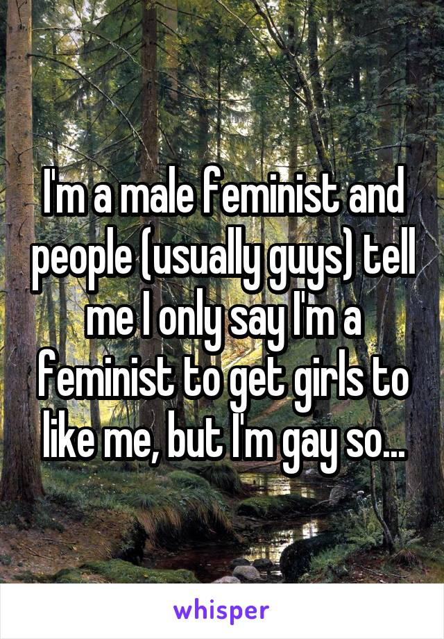 I'm a male feminist and people (usually guys) tell me I only say I'm a feminist to get girls to like me, but I'm gay so...