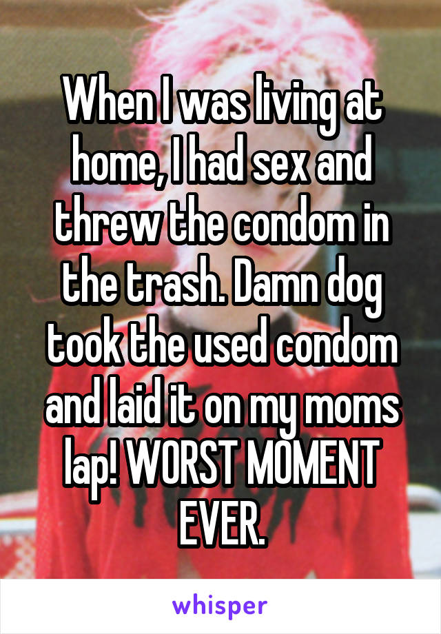 When I was living at home, I had sex and threw the condom in the trash. Damn dog took the used condom and laid it on my moms lap! WORST MOMENT EVER.