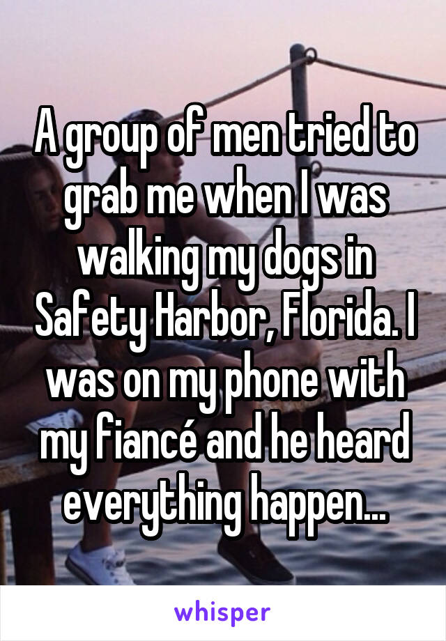 A group of men tried to grab me when I was walking my dogs in Safety Harbor, Florida. I was on my phone with my fiancé and he heard everything happen...
