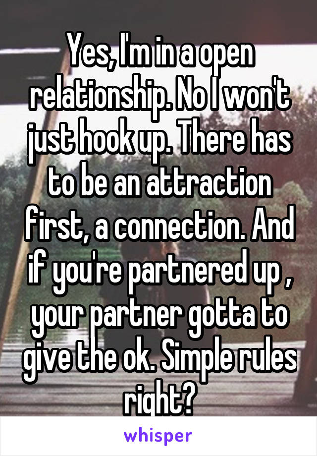 Yes, I'm in a open relationship. No I won't just hook up. There has to be an attraction first, a connection. And if you're partnered up , your partner gotta to give the ok. Simple rules right?