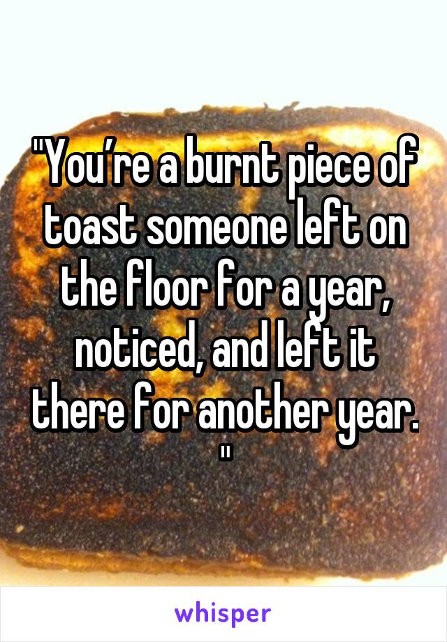"""You're a burnt piece of toast someone left on the floor for a year, noticed, and left it there for another year. """