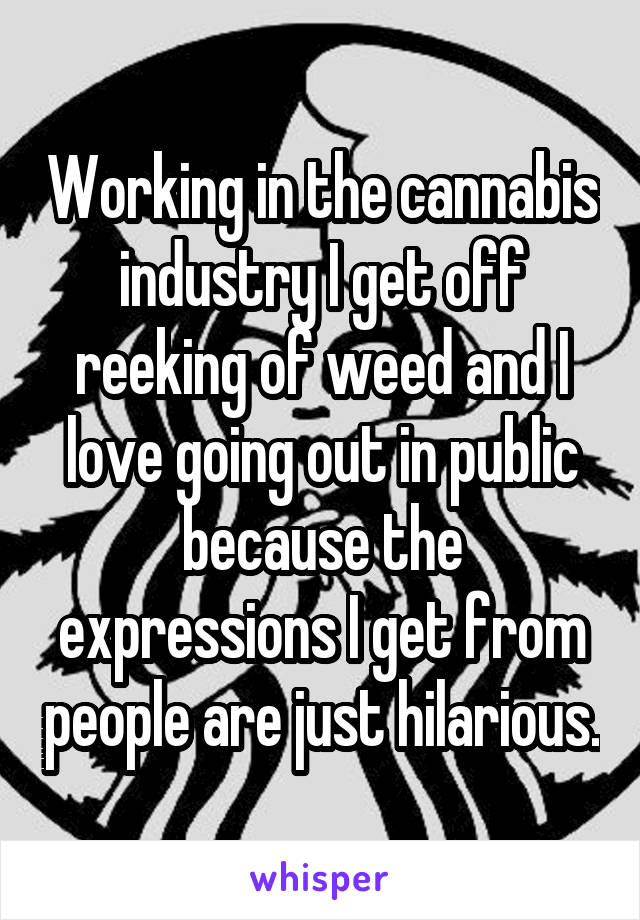 Working in the cannabis industry I get off reeking of weed and I love going out in public because the expressions I get from people are just hilarious.