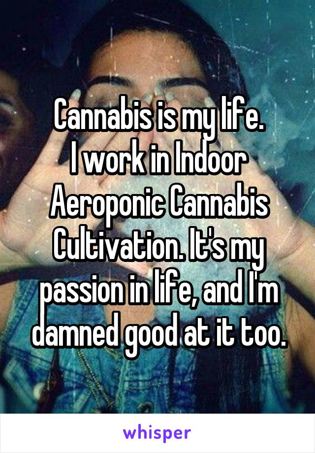 Cannabis is my life. I work in Indoor Aeroponic Cannabis Cultivation. It's my passion in life, and I'm damned good at it too.