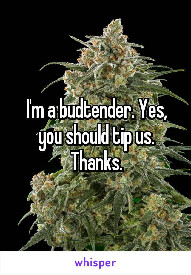 I'm a budtender. Yes, you should tip us. Thanks.