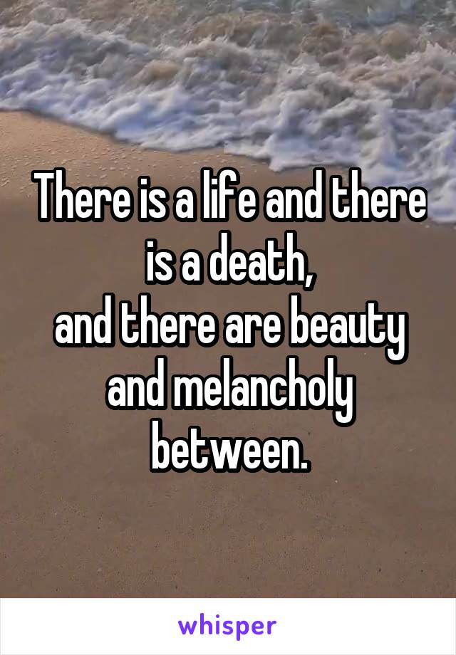 There is a life and there is a death, and there are beauty and melancholy between.