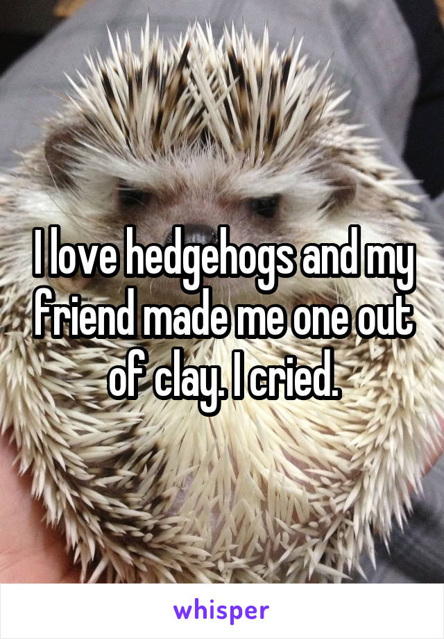 I love hedgehogs and my friend made me one out of clay. I cried.