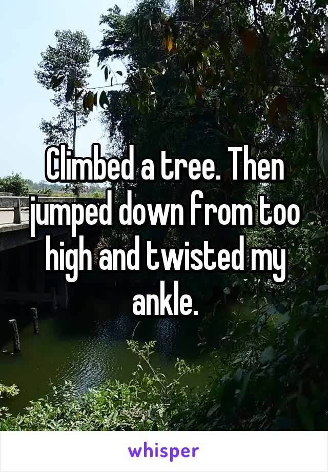 Climbed a tree. Then jumped down from too high and twisted my ankle.
