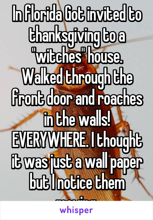 "In florida Got invited to thanksgiving to a ""witches"" house. Walked through the front door and roaches in the walls! EVERYWHERE. I thought it was just a wall paper but I notice them moving."
