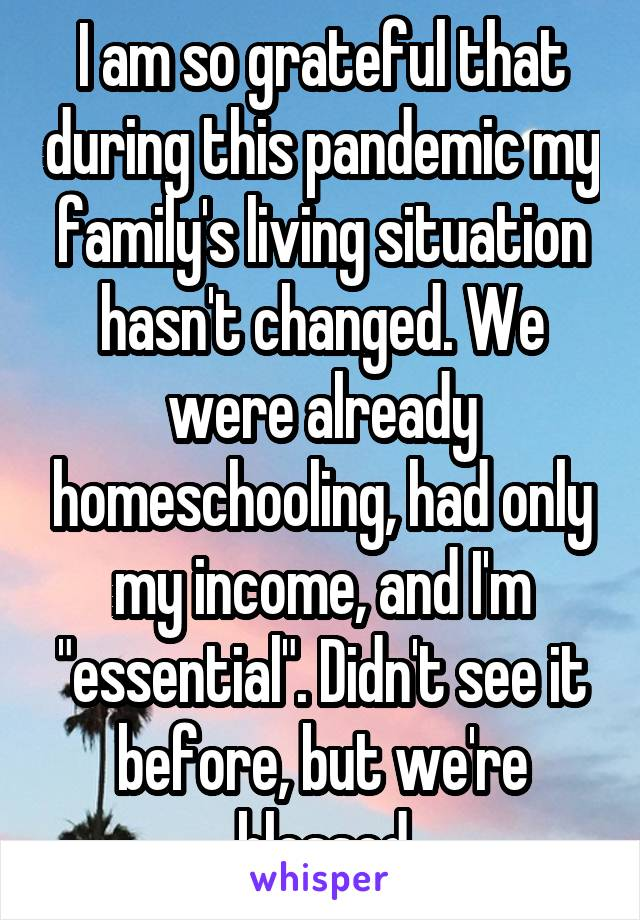 "I am so grateful that during this pandemic my family's living situation hasn't changed. We were already homeschooling, had only my income, and I'm ""essential"". Didn't see it before, but we're blessed"