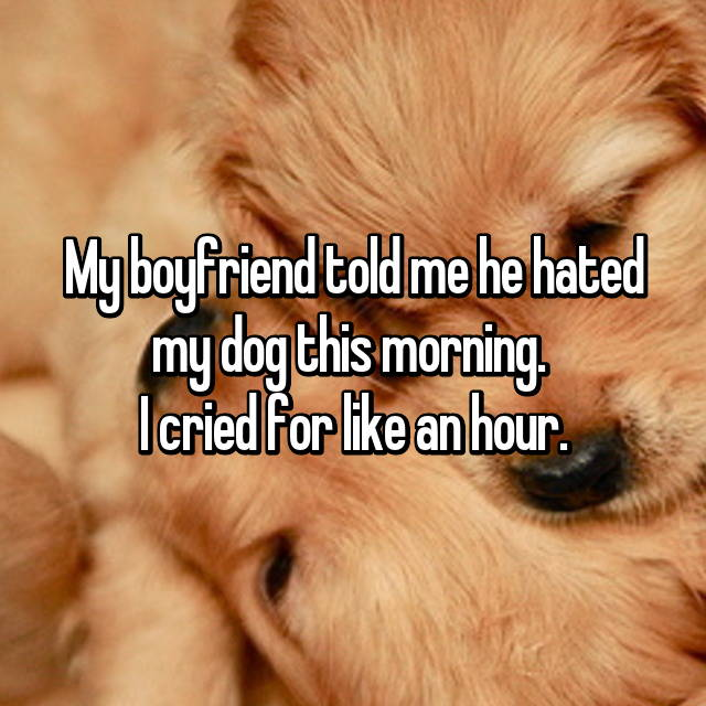 My boyfriend told me he hated my dog this morning.  I cried for like an hour.