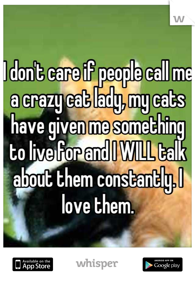 I don't care if people call me a crazy cat lady, my cats have given me something to live for and I WILL talk about them constantly. I love them.