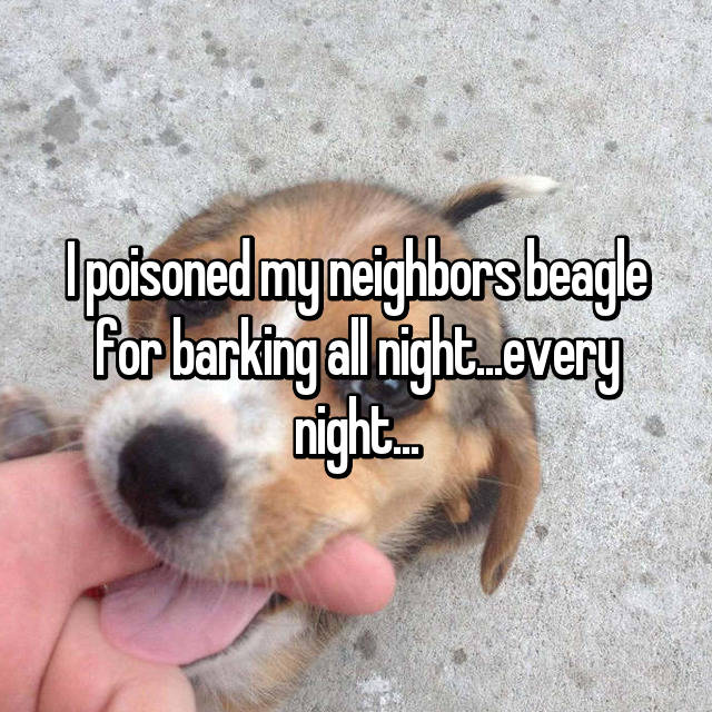 I poisoned my neighbors beagle for barking all night...every night...