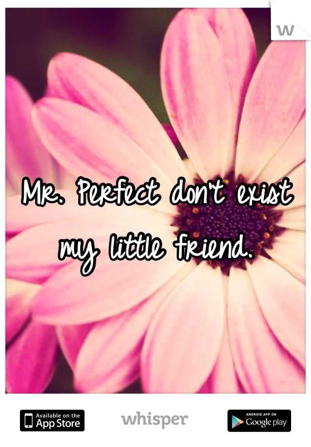 Mr. Perfect don't exist my little friend.