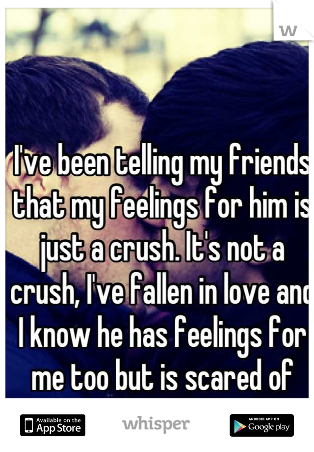 I've been telling my friends that my feelings for him is just a crush. It's not a crush, I've fallen in love and I know he has feelings for me too but is scared of getting hurt or causing it.