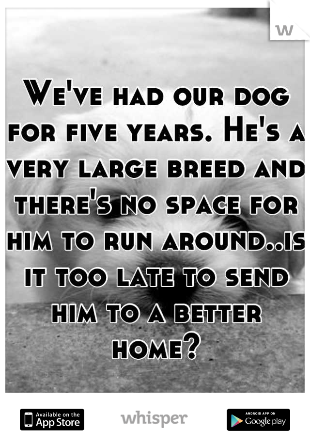 We've had our dog for five years. He's a very large breed and there's no space for him to run around..is it too late to send him to a better home?