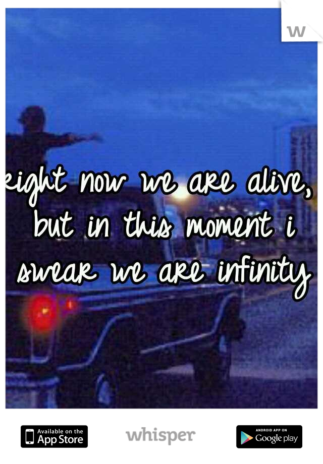right now we are alive, but in this moment i swear we are infinity