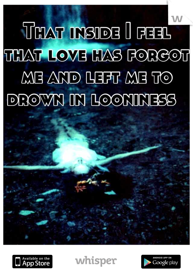 That inside I feel that love has forgot me and left me to drown in looniness