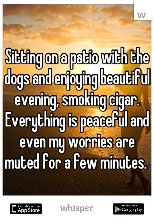 Sitting on a patio with the dogs and enjoying beautiful evening, smoking cigar. Everything is peaceful and even my worries are muted for a few minutes.