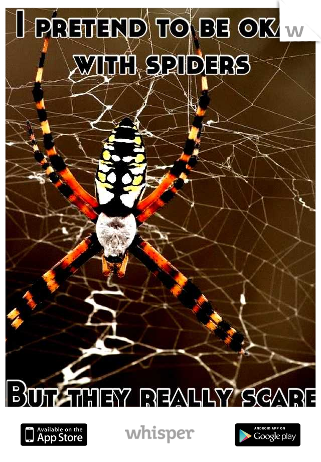 I pretend to be okay with spiders         But they really scare the shit out of me